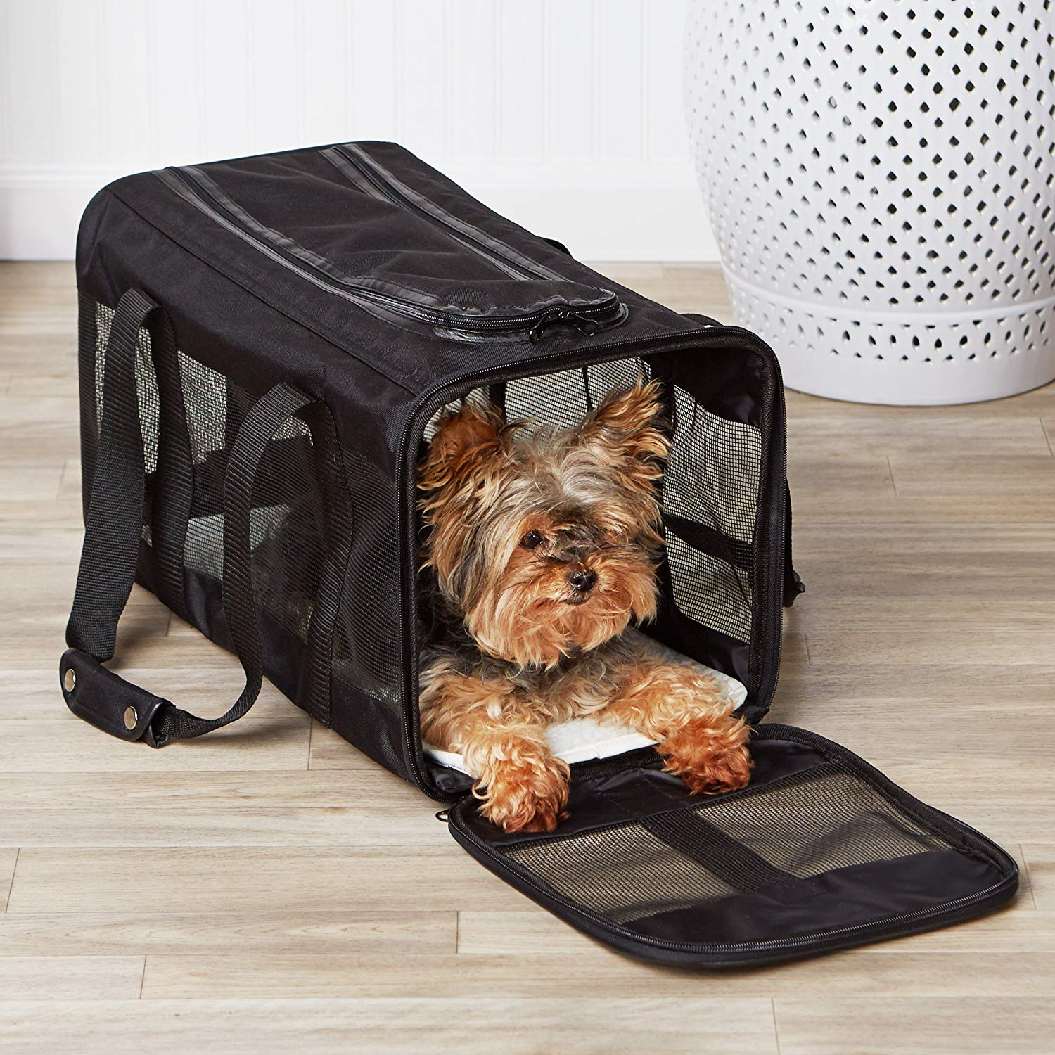 AmazonBasics Soft-Sided Pet Travel Carrier with a doggie inside