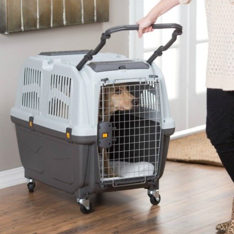 Best Airline Approved Dog and Pet Crates Reviews in 2020
