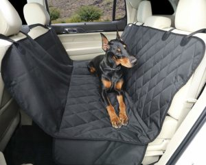 Best Dog Seat Covers for Pets 2021 reviews