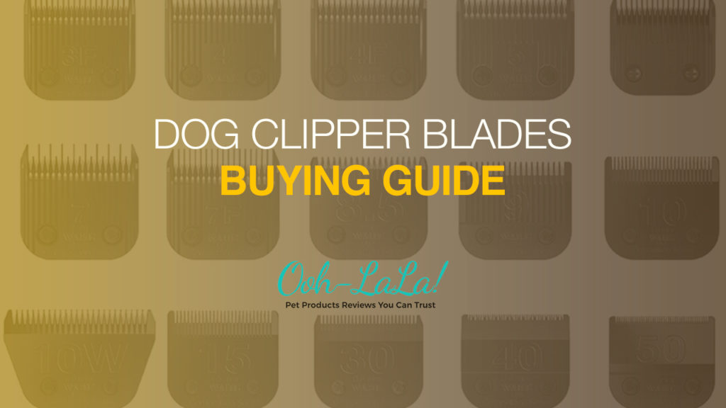 Dog Clipper Blades Buying Guide