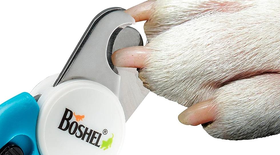 Boshel Dog Nail Clippers Review