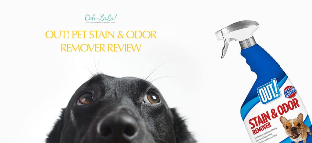 OUT! Pet Stain & Odor Remover Review