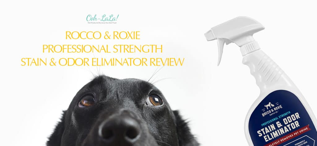 Rocco & Roxie Stain and Odor Eliminator Review